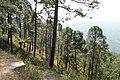 Uttarakhand 005.jpg