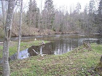 Valdaysky District - The Valdayka River in Valdaysky District