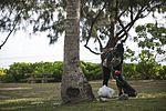 Valiant Shield 16, Servicemembers volunteer in annual Guam cleanup 160917-M-WW697-006.jpg