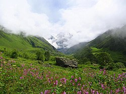 Valley of flowers uttaranchal full view.JPG