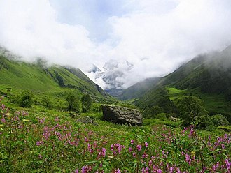 Climate of India - A scene in Uttarakhand's Valley of Flowers National Park. In contrast to the rain shadow region of Tirunelveli, the park receives ample orographic precipitation due to its location in a mountainous windward-facing region wedged between the Zanskars and the Greater Himalayas.
