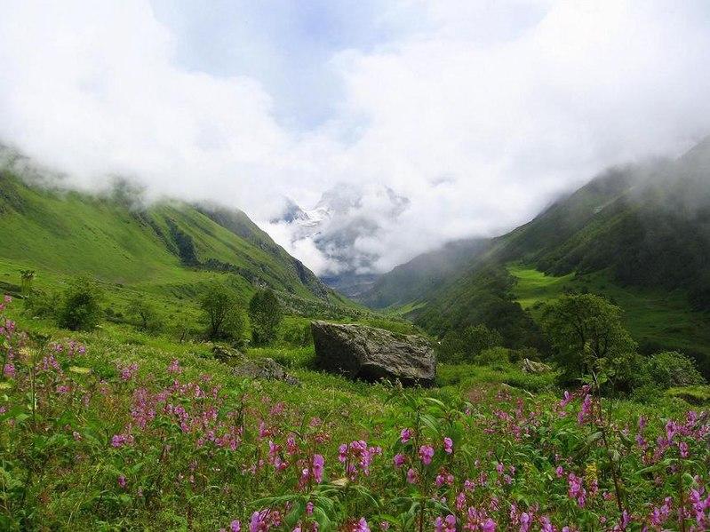 لنتعــرّف على وادي الزهور بالهند 799px-Valley_of_flow