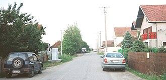 Veliki Rit, Novi Sad - Street in Veliki Rit