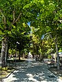 Viale centrale Villa Comunale.jpg
