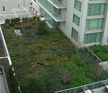 Rainwater harvesting in Canada - Wikipedia