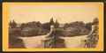 View in grounds at Longwood, St. Helene island, S.C, from Robert N. Dennis collection of stereoscopic views.png