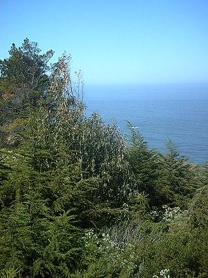 Gorda, California - View of Pacific Ocean at Gorda, California.