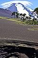 Volcán Llaima 4.jpg