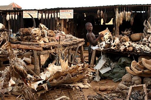 Voodo-fetischmarkt-Lomé