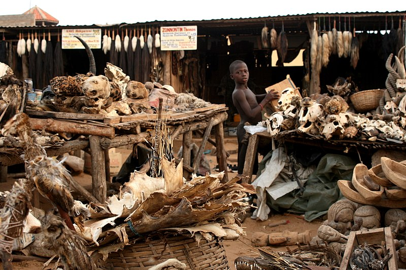 File:Voodo-fetischmarkt-Lomé.jpg