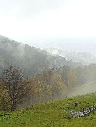 Vyzhnytsia National Nature Park - Image: Vyzhn national park