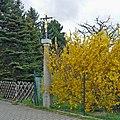 WK-Cölln-B96-Abzweig-Radibor.jpg
