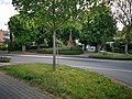 Wanderung in Tauberbischofsheim 7.jpg