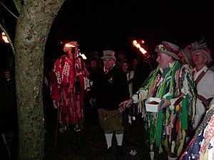Twelfth Night (holiday) - Wassailing apple trees on the twelfth night to ensure a good harvest, a tradition in Maplehurst, West Sussex