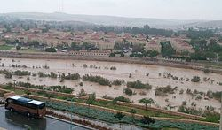 Water in Beersheba Stream - 04.jpg