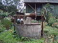 Water well in Latvia.JPG
