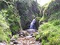 Waterfall, Gortin Glen Forest Park - geograph.org.uk - 1350780.jpg