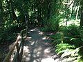 Watershed Park, Olympia.jpg
