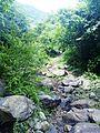 Way to SRI VALUKKUPARAI MUNIAPPAN TEMPLE and SRI JALAMKANDA MUNIAPPAN TEMPLE, Yercaud foot hill, Salem - panoramio.jpg