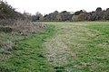 Welches Meadow local nature reserve - geograph.org.uk - 1564358.jpg