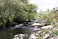 West Dart River - geograph.org.uk - 617050.jpg