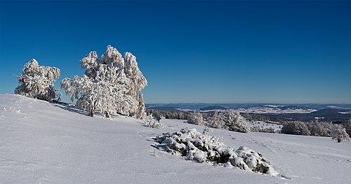 Winter in the Rhön Mountains