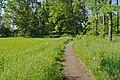 Wittmoor - hoevelgraff.jpg