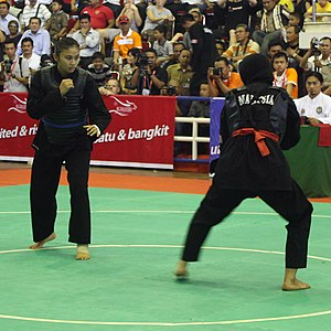 Indonesian martial arts - Pencak silat tournament in SEA Games XXVI.