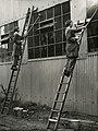 Women cleaning windows (15216375327).jpg