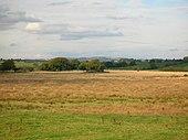 Woodmound2007