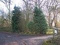 Wouldham Common Wood - geograph.org.uk - 1062075.jpg