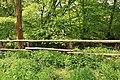 Wuppertal - Bachschwinde Blumenroth 03 ies.jpg