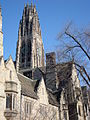 Yale University - Central Campus Architecture - New Haven CT - USA - 06.jpg