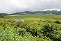 Yashimagahara Wetland 01.jpg
