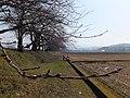 Yatsuomachi Nakajinzu, Toyama, Toyama Prefecture 939-2311, Japan - panoramio (5).jpg