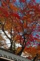 Yoshimine-dera (8256307108).jpg