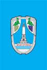 Zastava Vlasotinca.png