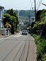 (yokosuka suidoumichi) - panoramio.jpg