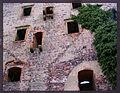 Świny zamek (26) Świny zamek. Foto Barbara Maliszewska.JPG