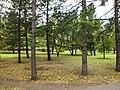Алое поле (Челябинск) f006.jpg