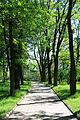 Болдині гори парк.JPG