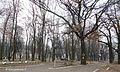 Вінниця, П'ятничанський парк.jpg