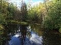 Кильбо (река) 1.jpg