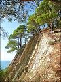 На скалах у моря.jpg
