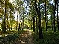 """Осенняя дорожка (парк """"Швейцария"""").jpg"""