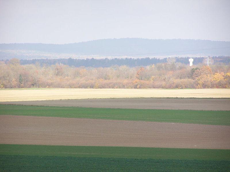 Осенняя чрезполосица