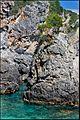 Палеокастрица - panoramio.jpg