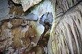 Пештера Гулабарница 33.jpg