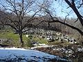 Пожаране - гробишта.JPG