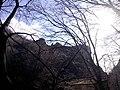 "Резерват ""Стара река"" 36.jpg"